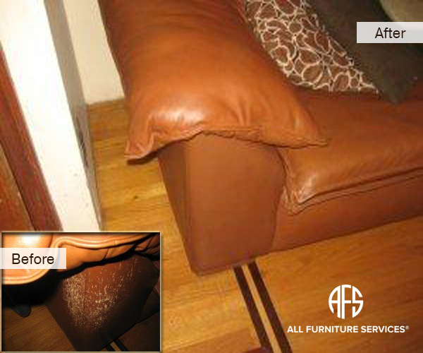 Leather Vinyl Cat Animal damage repair dye restore